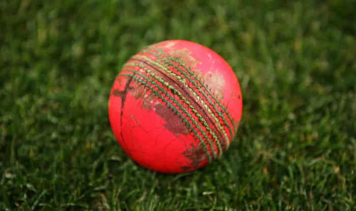 File image of Pink ball.