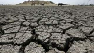 Section 144 imposed in Betul, MP, following severe water crisis