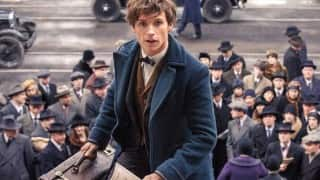 The latest trailer of Fantastic Beasts and Where To Find Them introduces magical creatures you will love!