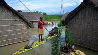 Assam floods claim 13 lives, over 20 lakh affected; 80 per cent of Kaziranga National Park submerged