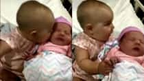 This 8-month old girl can't stop kissing her new-born cousin and almost eats her off trying to kiss her!