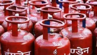 Direct LPG subsidy savings only 15 per cent of government claim: CAG