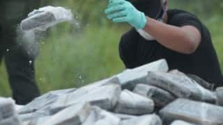 In biggest catch, cocaine worth Rs 3.5 cr seized