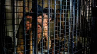 Two Mexican kidnappers sentenced to 520 years in prison