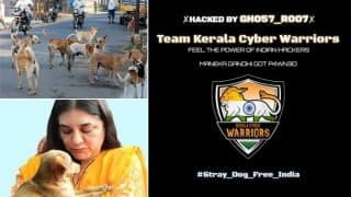 From stray dogs to serial killers: Is man's best friend turning into man's worst enemy in India?