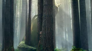Pete's Dragon Movie Review: A truly magical tale