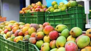 Karnataka Farmers Team up With Flipkart For Home Delivery of Mangoes