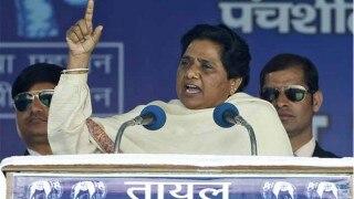 मायावती ने राहुल पर टिप्पणी करने वाले BSP उपाध्यक्ष को पार्टी से निकाला, अब इन राज्यों के प्रभारी बदले