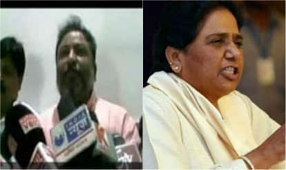 Mayawati abuse case: Expelled BJP leader Dayashankar Singh gets bail