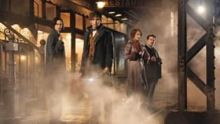 Second 'Fantastic Beasts' film to release in on November 16, 2018