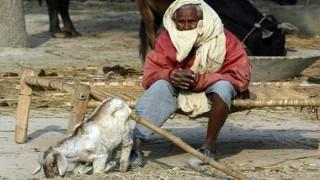 उत्तर प्रदेश: गौरक्षकों के डर से दलितों ने की सुरक्षा की मांग
