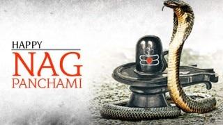 Nag Panchami 2016 Puja Vidhi: Know the Auspicious timings and Puja Muhurat of Nag Panchami festival