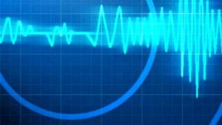Earthquake felt at Nebraska nuclear power plant