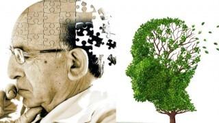 World Alzheimer's Day 2018: क्या है अल्जाइमर? भूलने की बीमारी से होती है शुरुआत, जानें वजहें...