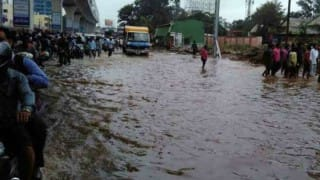 Telangana: Flood alert issued in three districts as Godavari River swells