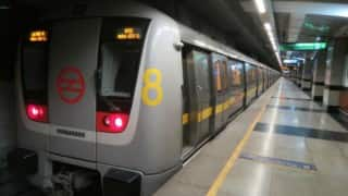 Man Commits Suicide by Jumping Before Delhi Metro, Yellow Line Services Briefly Affected