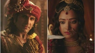 Chandra Nandini Promo OUT: Actor Rajat Tokas dons Chandragupt Maurya look, Shweta Basu Prasad returns as Nandini; Watch new promo!