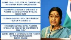 Sushma Swaraj speech at UN: 5 issues she would raise to isolate Pakistan on international forum