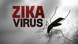 Indians vulnerable to zika virus: Study