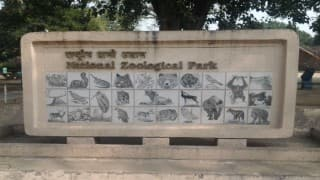 Delhi zoo shuts down amid bird flu scare
