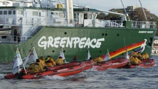 US intervention sought in Indian action against Greenpeace