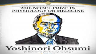 Yoshinori Ohsumi from Japan wins Nobel medicine prize