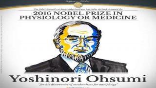 Yoshinori Ohsumi from Japan wins Nobel medicine prize