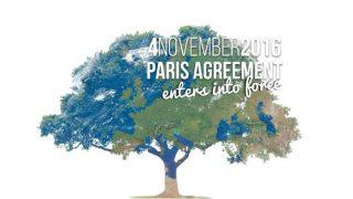 Paris climate pact enters into force