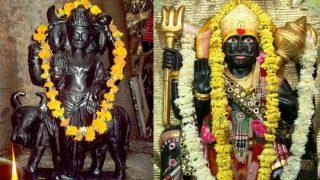 Shani Dev: शनिवार के दिन दिख जाएं ये चीजें, तो मिलती है शनिदेव की कृपा