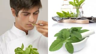 This Tulsi Vivah 2016 know all about 7 benefits of Holy Basil!