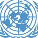 Death of 1 Million Carp Fish in Iraq Due to Disease, Not Pollution, Says UN Spokesperson