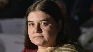 Court to consider plea agnst CBI closure report in Maneka Gandhi case
