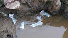 uttar pradesh 500-1000 old note found in garbage | नाले…