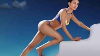 Kingfisher Calendar 2017 pictures:Bikini hotties to warm you up in the winter chill! (14 hot photos)