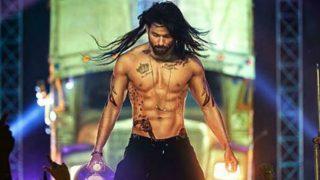 Salman Khan, Aamir Khan & Parineeti Chopra: 9 most extreme celebrity body transformations of 2016