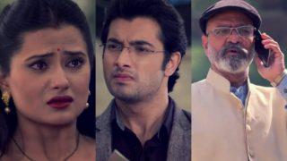 Kasam Tere Pyar Ki 13th December 2016 full episode, preview: Rishi calls off his plan to divorce Tanuja, all thanks to Raj!