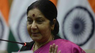 Norway child issue: Activists, European parliamentarians seek Sushma Swaraj's help