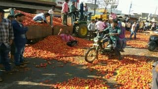 Falling tomato prices forces farmers in Chhattisgarh to crush them on road: It's La Tomatina in Durg due to demonetisation