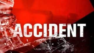 Indian-American woman killed by reckless compatriot driver