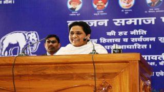 मध्य प्रदेश विधानसभा चुनाव: बसपा को 'किंग मेकर' की भूमिका निभाने की उम्मीद