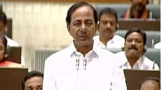 Telangana to formulate comprehensive plan for fisheries, sheep rearing