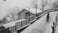 Death toll climbs to seven as Shimla records -3.2 degrees