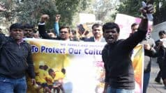 Jallikattu Protest Live Streaming: Live telecast of agitation against ban on bull taming spot
