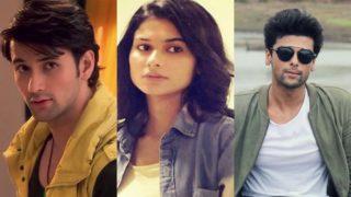 Beyhadh new twist: Ayaan to fall in love with Saanjh; will Arjun object?