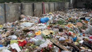 Delhi: Garbage pile up problem escalates as sanitation workers' strike enters fourth day