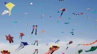 Gujarat's Kite Festival Turned Tragic: 16 People Reported Killed, 4,026 Birds Wounded During Uttarayan
