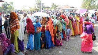 एमसीडी चुनाव 2017: गोपाल नगर, रोशनपुरा, ईशापुर वार्ड से बीजेपी तो नजफगढ़, दिचाऊ कला से निर्दलीय ने मारी बाजी
