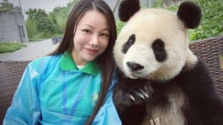 This adorable Panda shows you how to click a selfie and pose right! (See pictures)