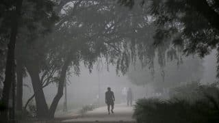 Delhi tries to tackle pollution again, launches grading response system