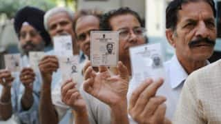 Goa witnesses record voter turnout of 83 per cent: Election Commission